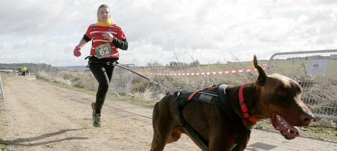 El Club Mushing Atletismo Arroyo acerca este nuevo deporte a la provincia