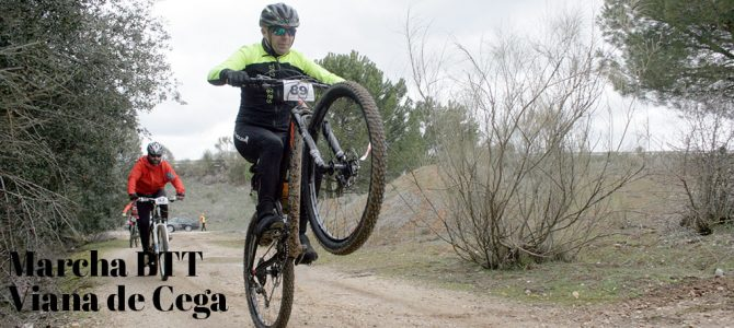 Tráfico fluido por los caminos de Viana de Cega